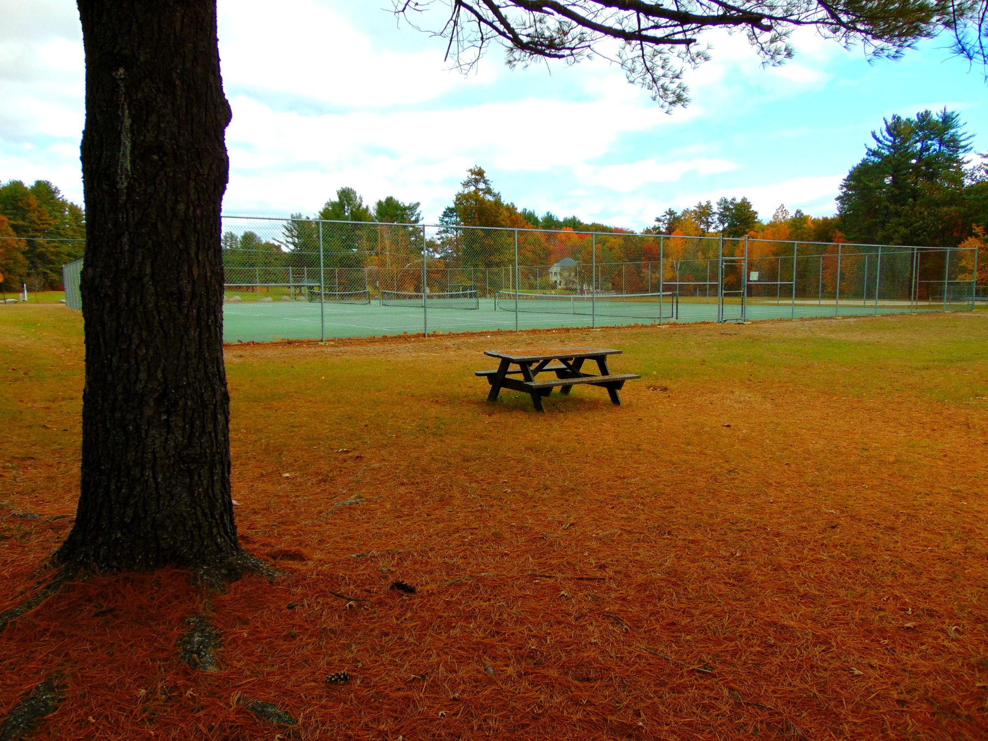 Beaver Meadow Tennis Courts