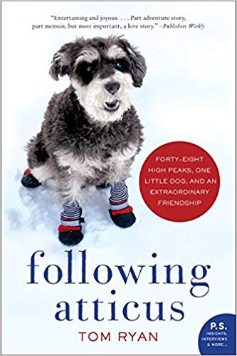 Following Atticus Book Cover